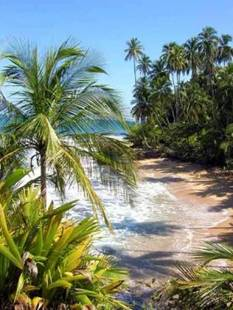 Пляжи Судака  фото самых лучших